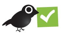 correct_bird