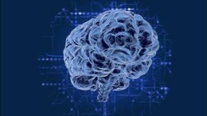 Human brain with data surrounding it