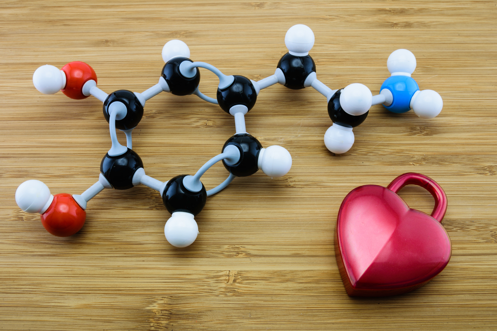 Plastic model of a dopamine molecule with a heart shape next to it